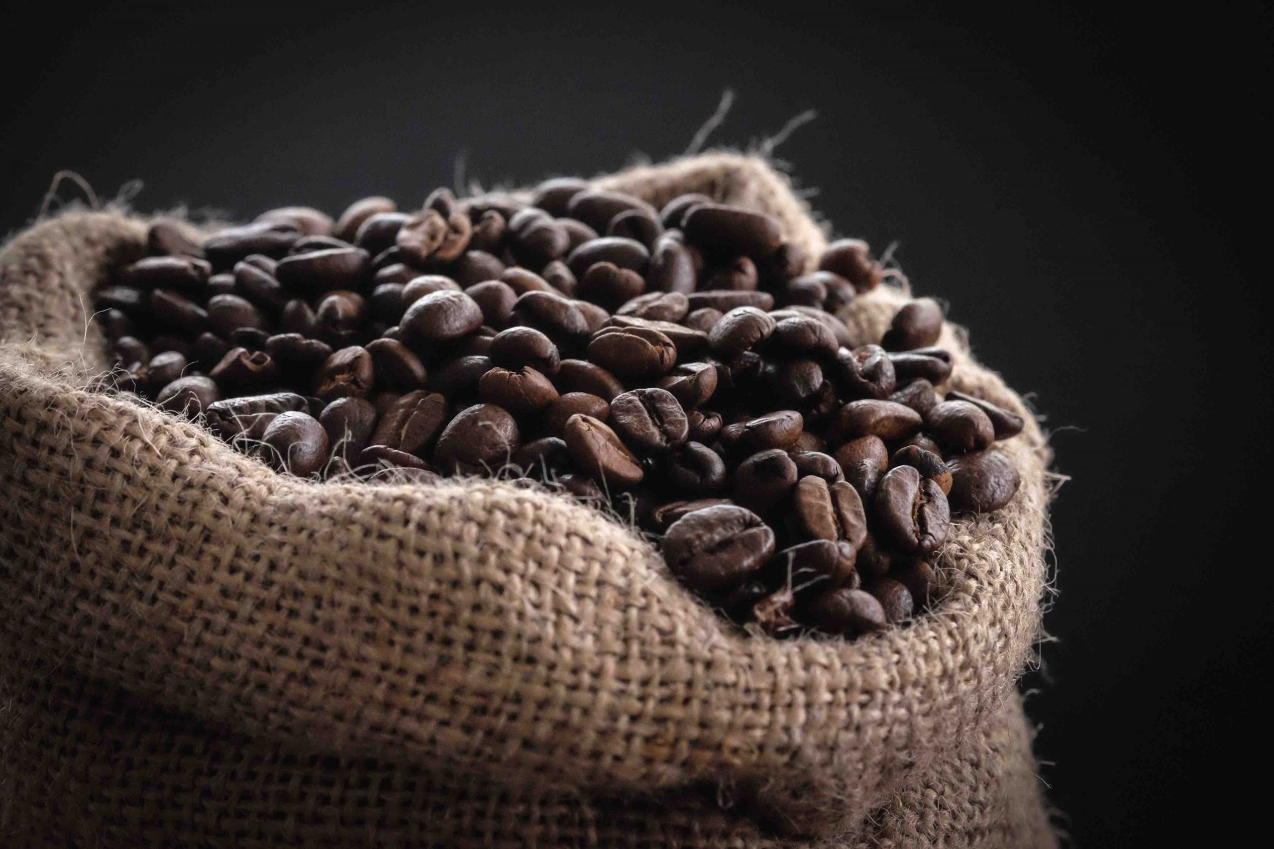 Want to Try Out Coffee Beans? Here is What You Must Know
